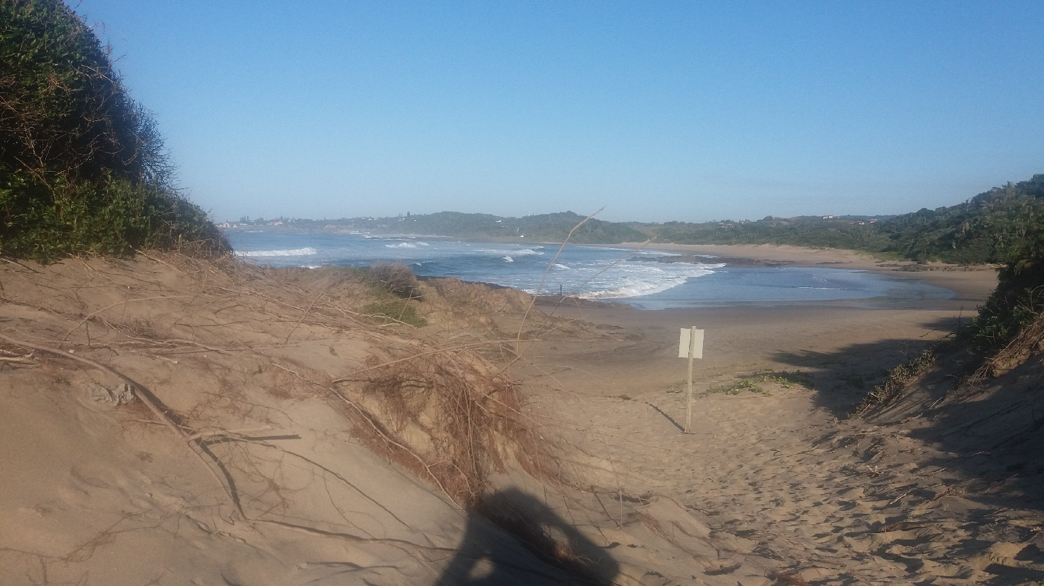drakes-bay-north-dune-rehab-plan-site-pictures